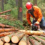 Special public liability insurance for farm and forest