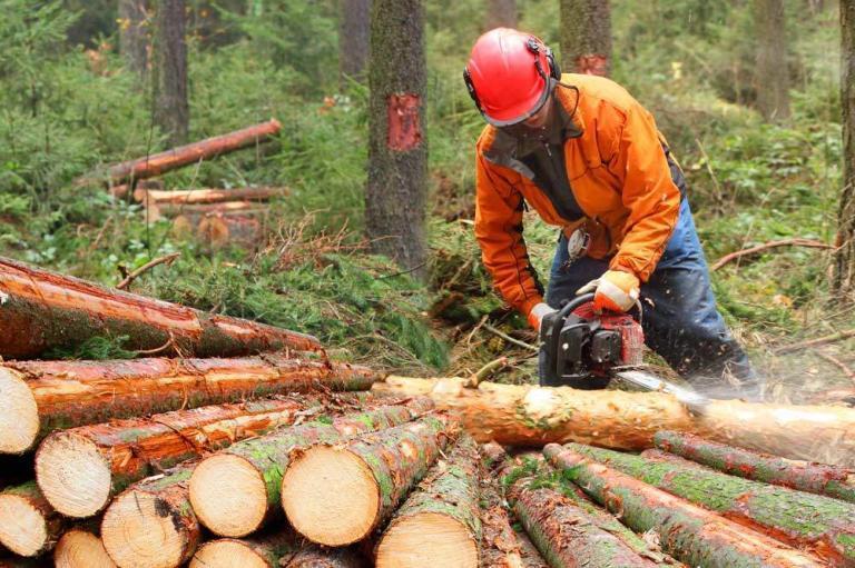 Spezialhaftpflichtversicherung für Land und Forst